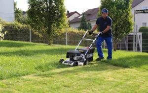 TIDYservice - Gartenpflege (1)